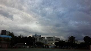 IMG_20161029_161731.jpg
